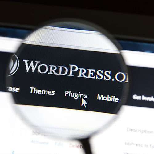 Custom Vs Pre Wordpress theme