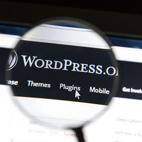 Custom Vs Pre Wordpress theme